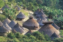 Información Kogui Grupo étnico Santa Marta