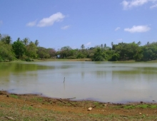 Laguna Big Pond
